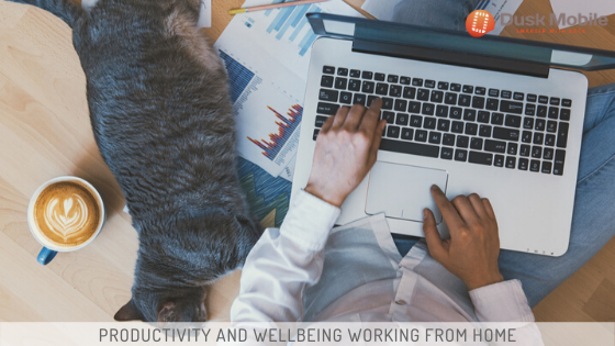 Productivity and Wellbeing Working From Home